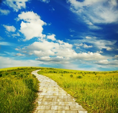 Follow Your Yellow Brick Road: A Creative System for Success