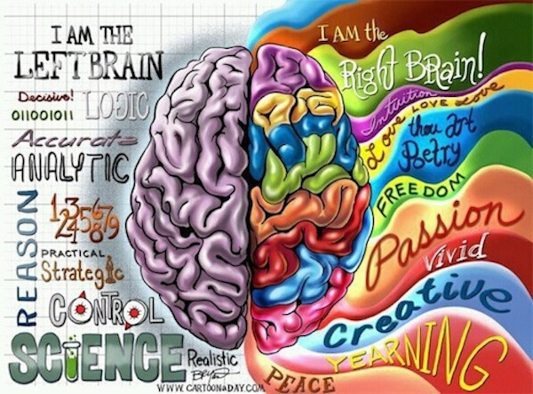 By Bryant Arnold http://www.cartoonaday.com/left-brain-right-brain-illustration/