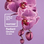 445291-Pantone_Color_of_the_Year_2014_Radiant_Orchid