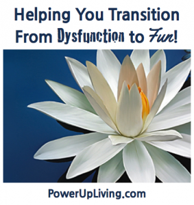 Helping You Transition From Dysfunction to Fun!
