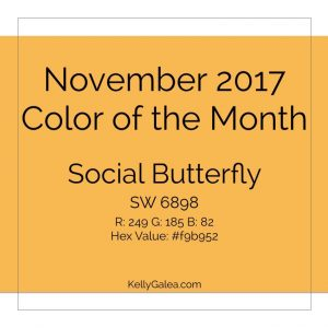 Color of the Month - November 2017