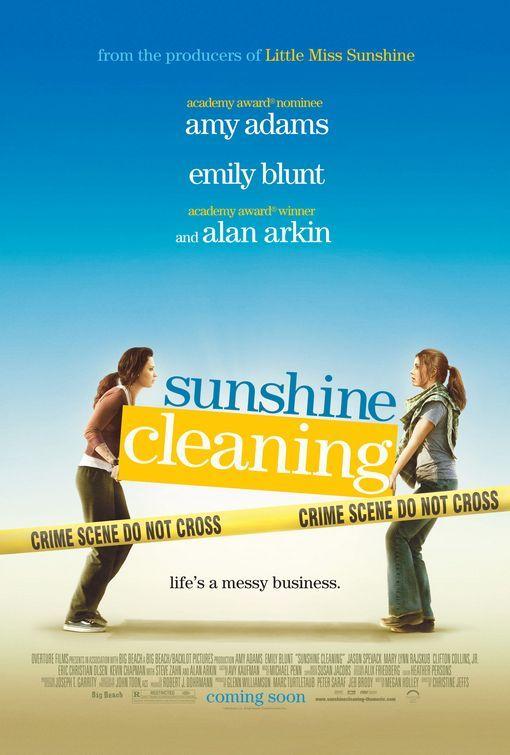 Sunshine Cleaning - 2008