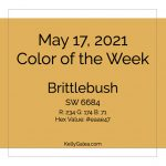 Color of the Week - May 17 2021